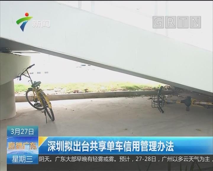 深圳拟出台共享单车信用管理办法