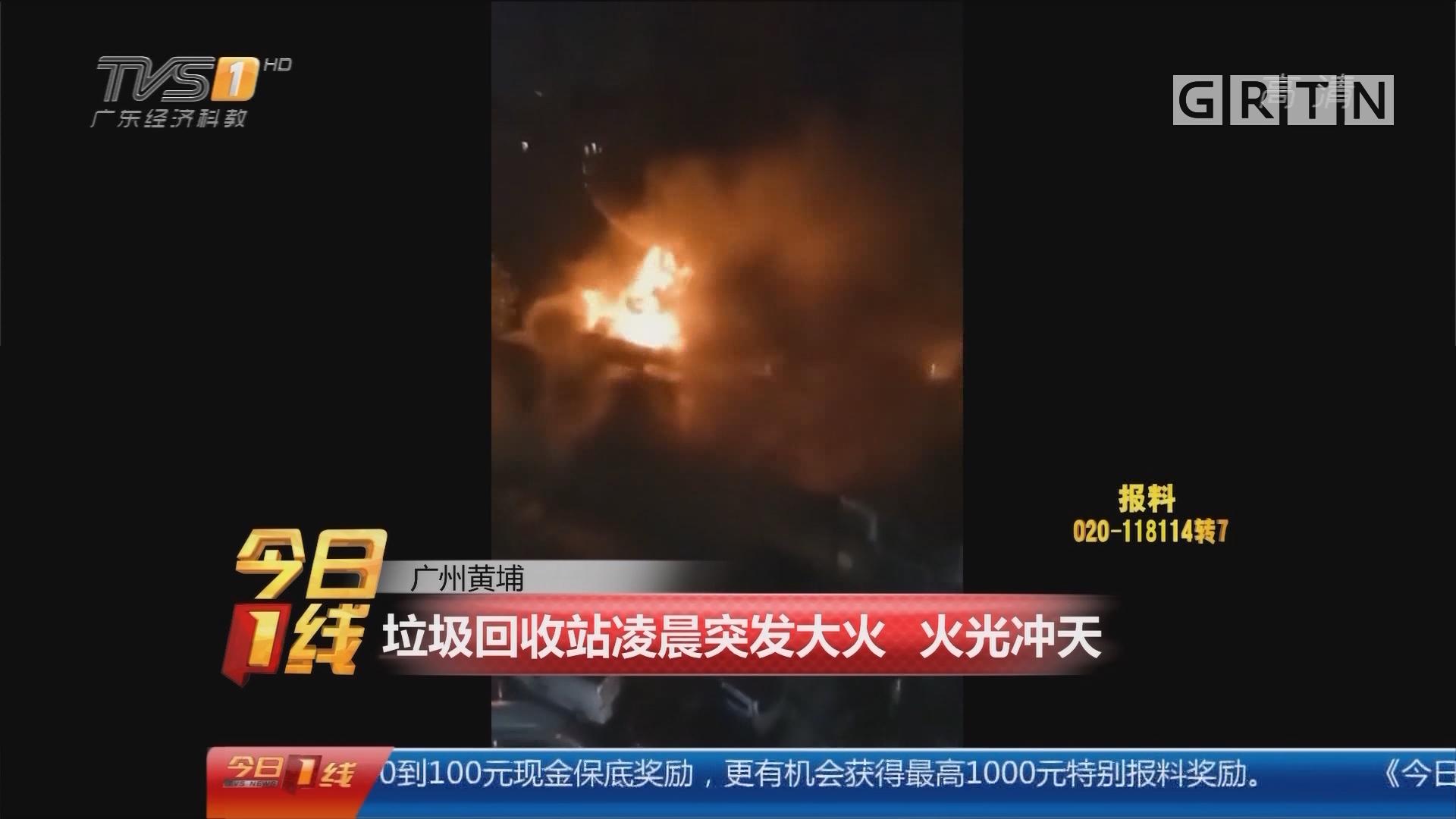 广州黄埔:垃圾回收站凌晨突发大火 火光冲天