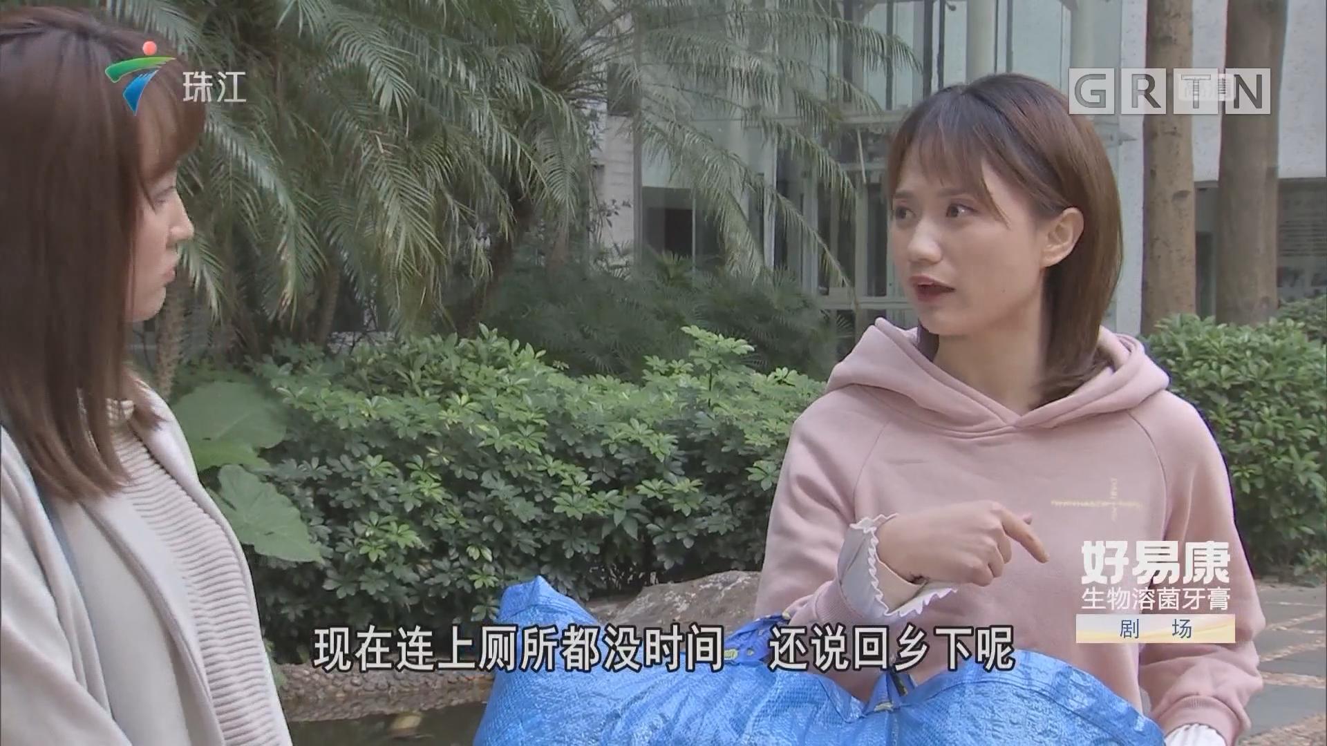 [HD][2019-03-23]外来媳妇本地郎:违心之恋(下)