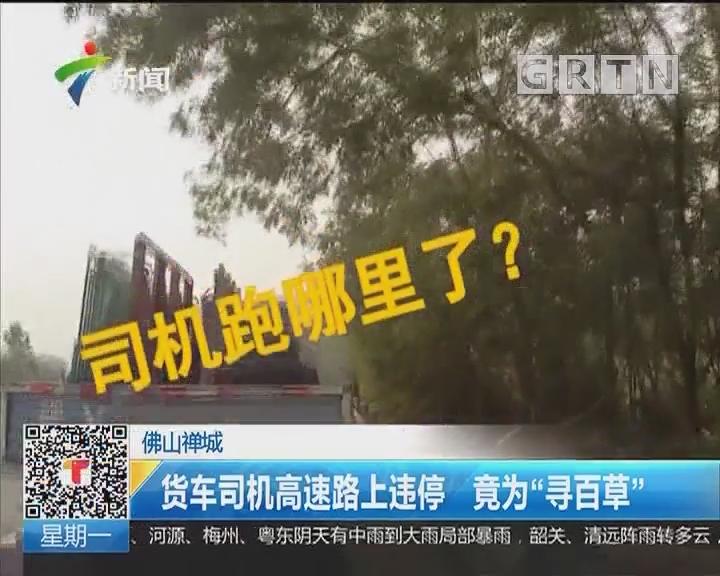 """佛山禅城:货车司机高速路上违停 竟为""""寻百草"""""""