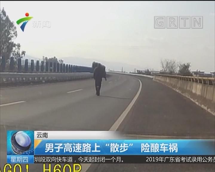 """云南:男子高速路上""""散步"""" 险酿车祸"""