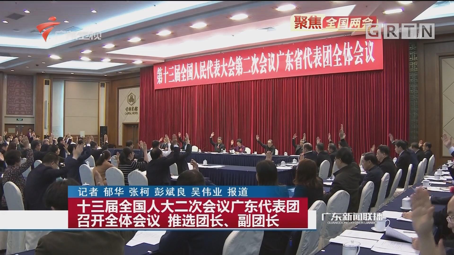 十三届全国人大二次会议广东代表团召开全体会议 推选团长、副团长
