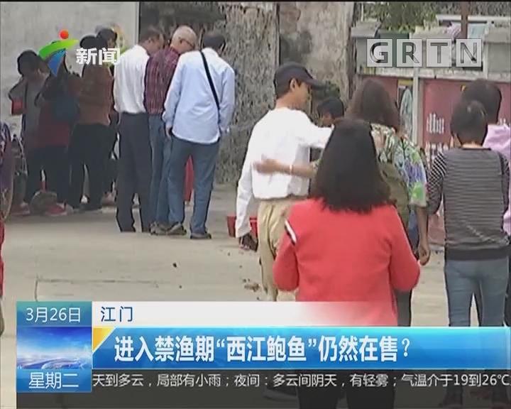 """江门:进入禁渔期""""西江鲍鱼""""仍然在售?"""