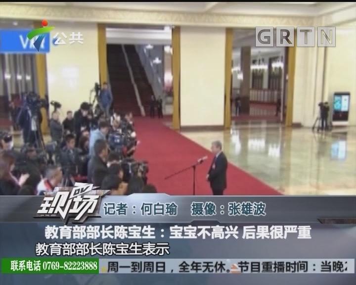 教育部部长陈宝生:宝宝不高兴 后果很严重