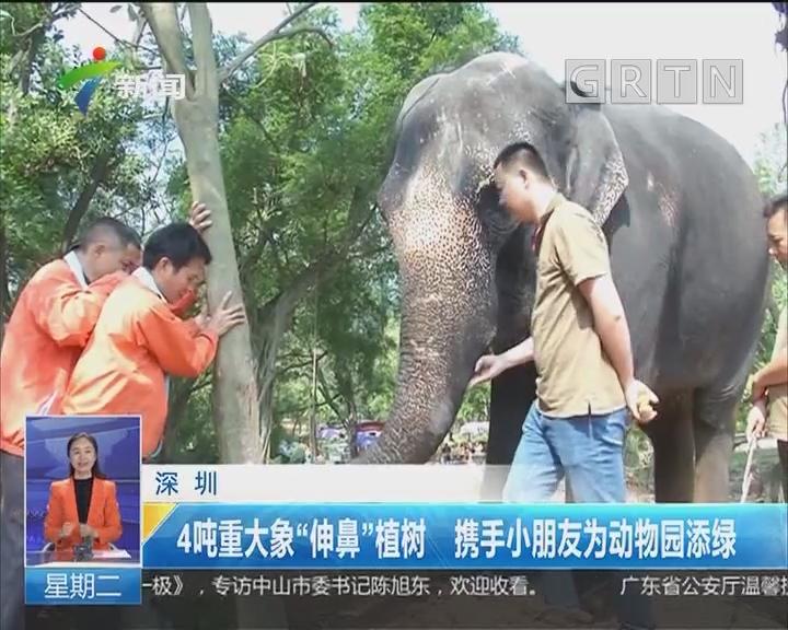 """深圳:4吨重大象""""伸鼻""""植树 携手小朋友为动物园添绿"""