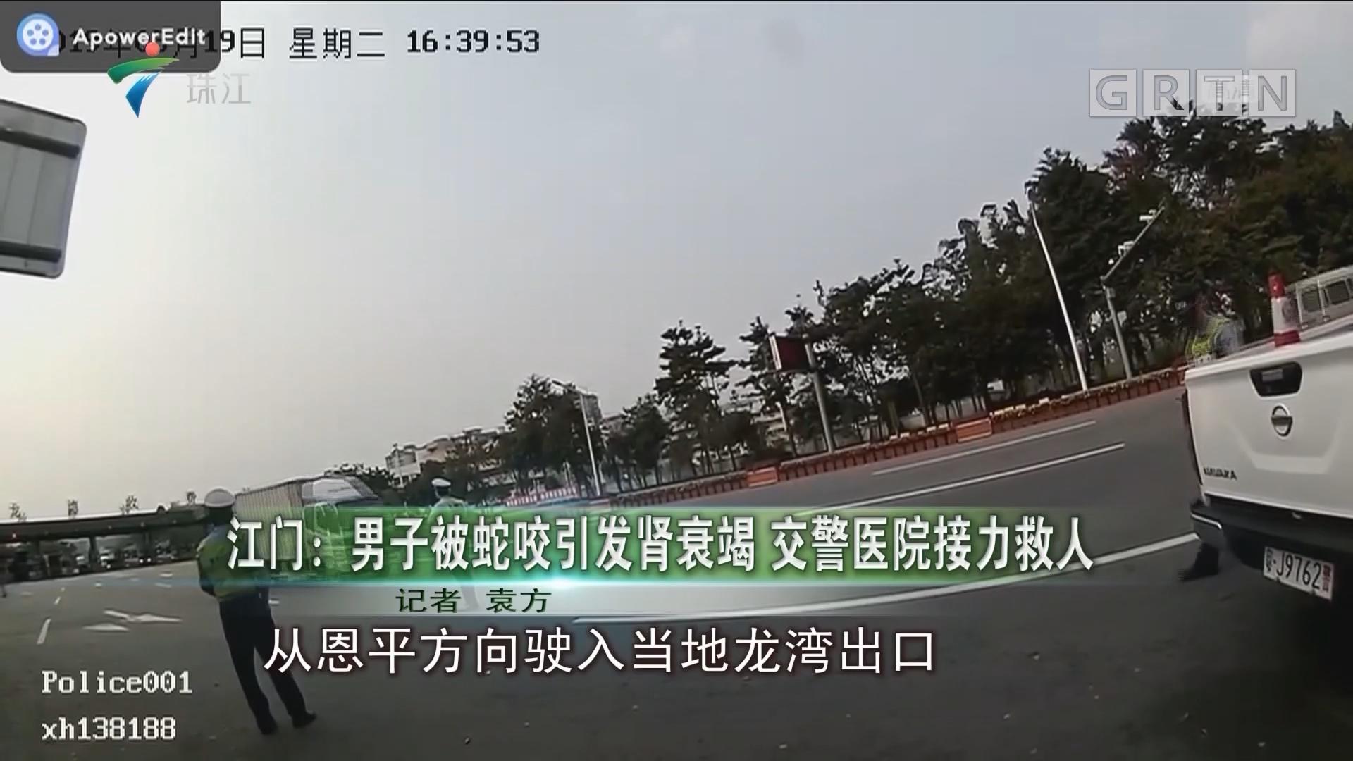 江门:男子被蛇咬引发肾衰竭 交警医院接力救人