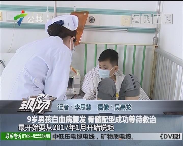 9岁男孩白血病复发 骨髓配型成功等待救治