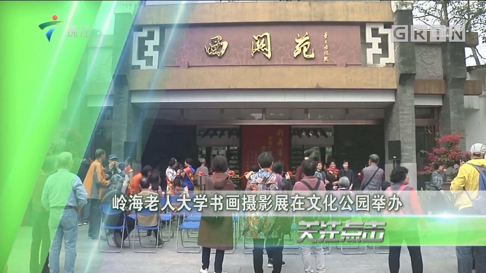岭海老人大学书画摄影展在文化公园举办