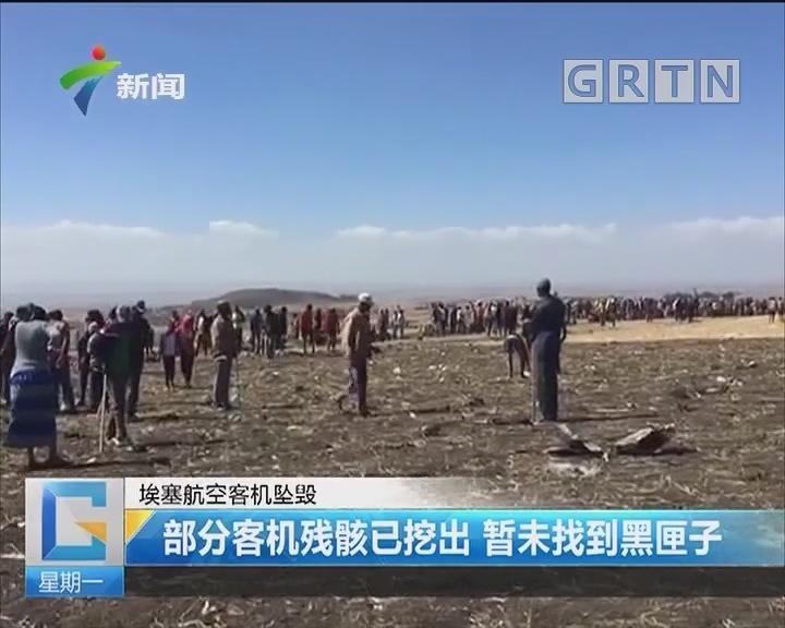 埃塞航空客机坠毁:部分客机残骸已挖出 暂未找到黑匣子