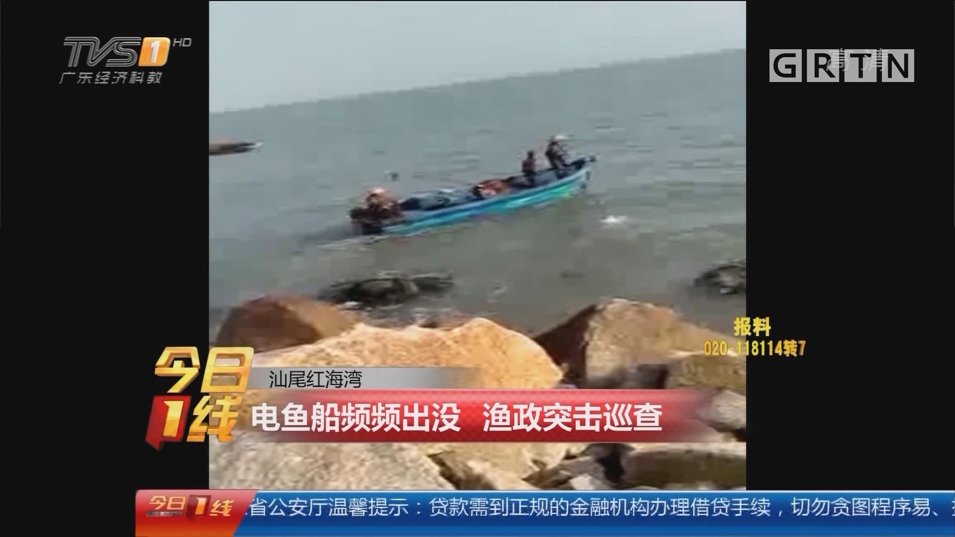 汕尾红海湾:电鱼船频频出没 渔政突击巡查
