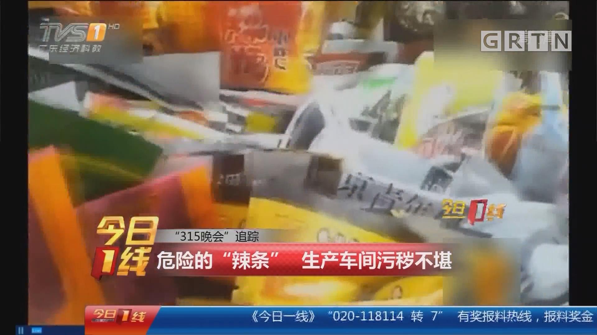 """""""315晚会""""追踪 危险的""""辣条"""" 生产车间污秽不堪"""