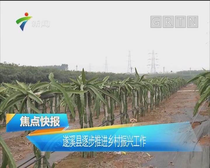 遂溪县逐步推进乡村振兴工作