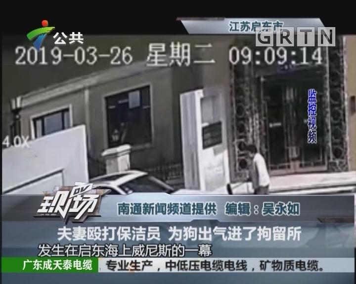 夫妻殴打保洁员 为狗出气进了拘留所