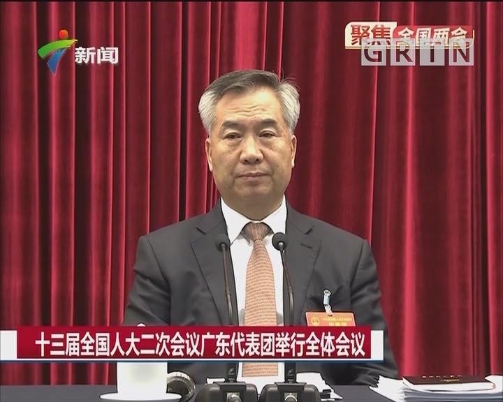 十三届全国人大二次会议广东代表团举行全体会议