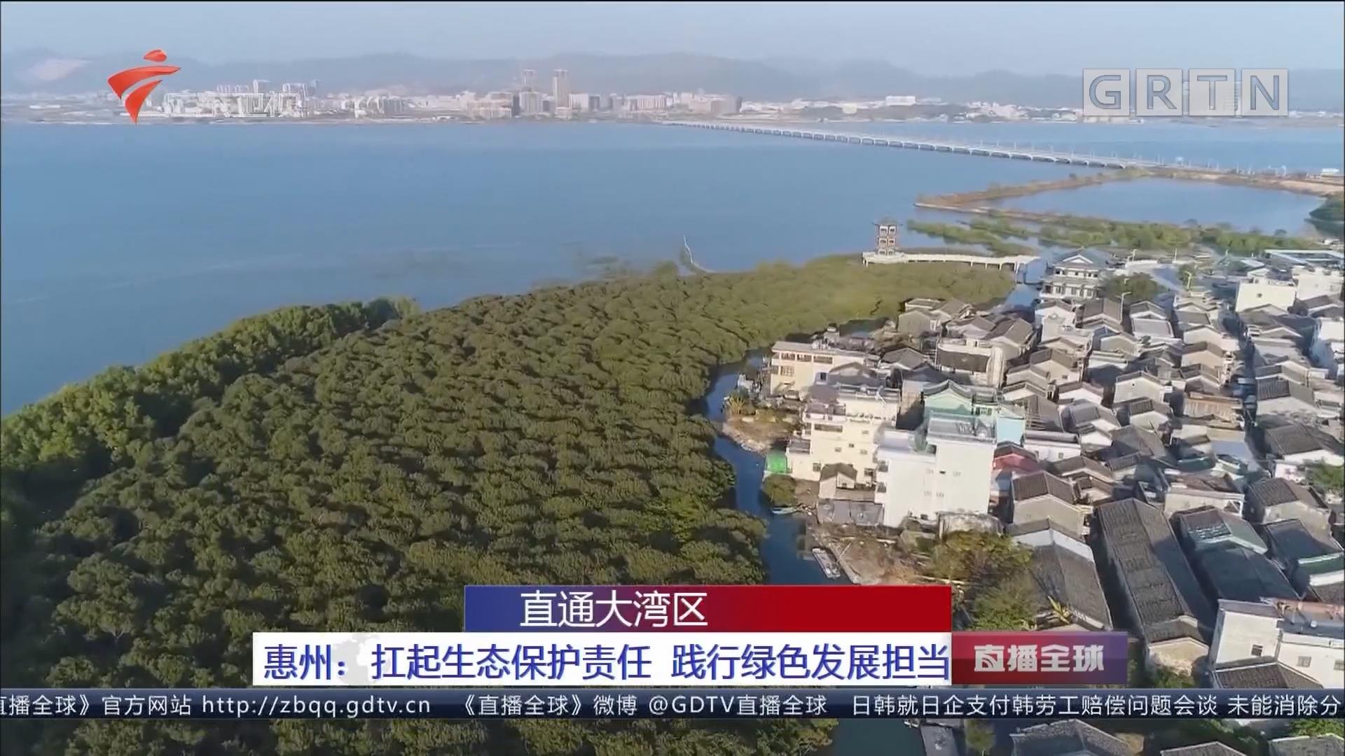 直通大湾区 惠州:扛起生态保护责任 践行绿色发展担当