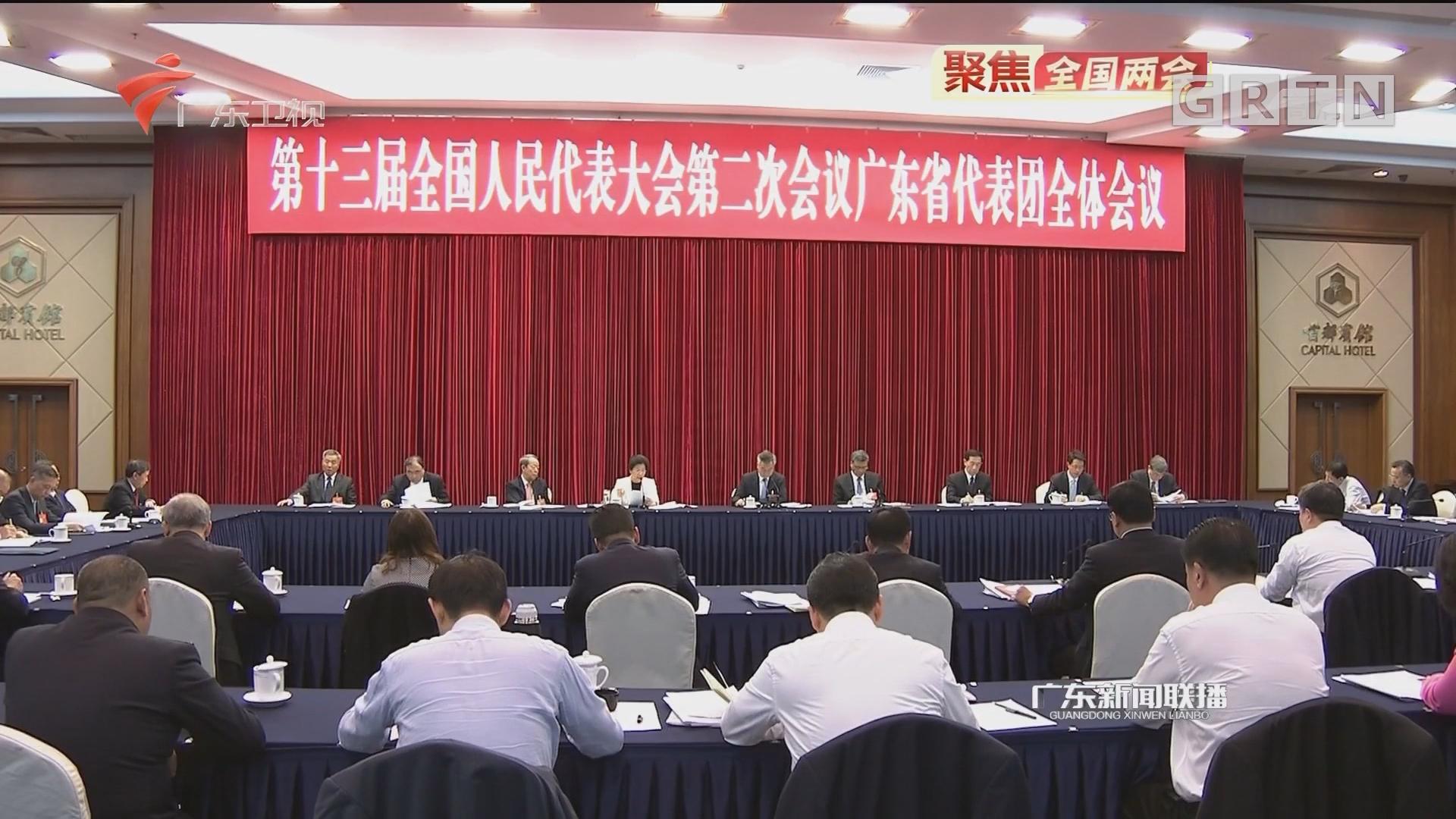 广东代表团举行全体会议 审议政府工作报告 李希马兴瑞李玉妹发言