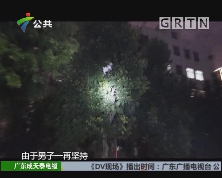 深圳:男子爬树扬言轻生 消防搭32米云梯救援