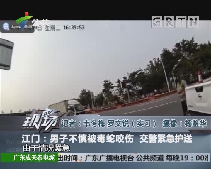 江门:男子不慎被毒蛇咬伤 交警紧急护送