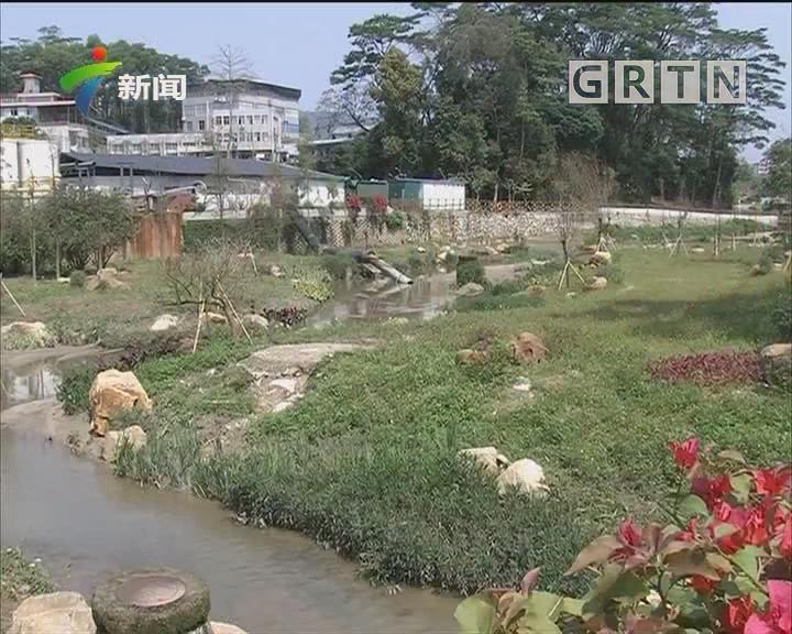 """广州:147条列入监管黑臭水体""""不黑不臭""""占九成以上"""