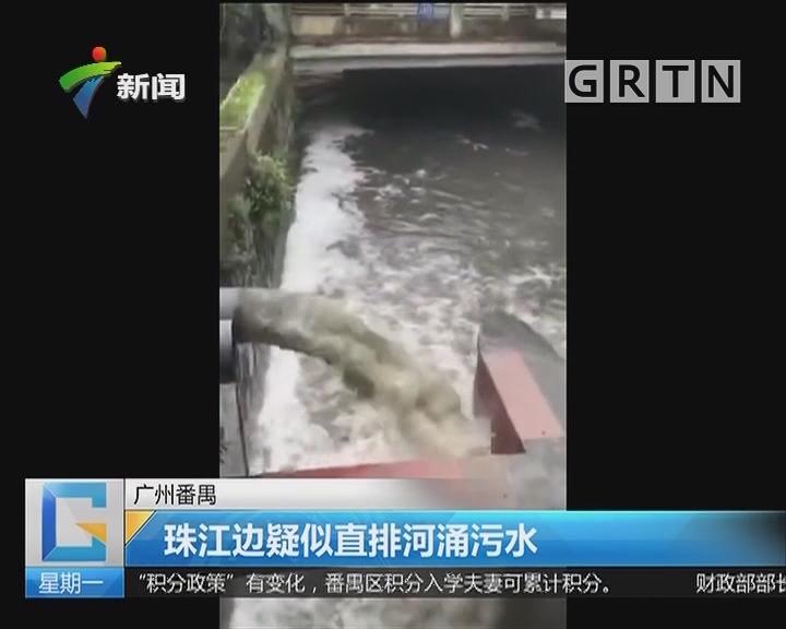 广州番禺:珠江边疑似直排河涌污水