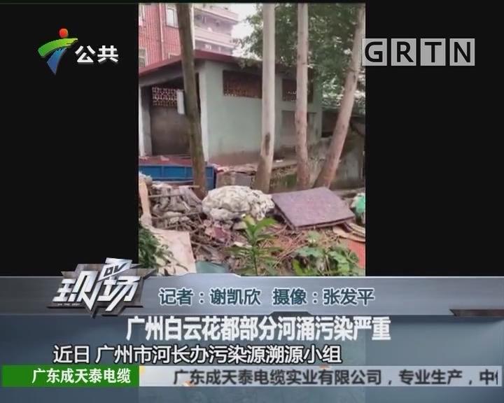 广州白云花都部分河涌污染严重
