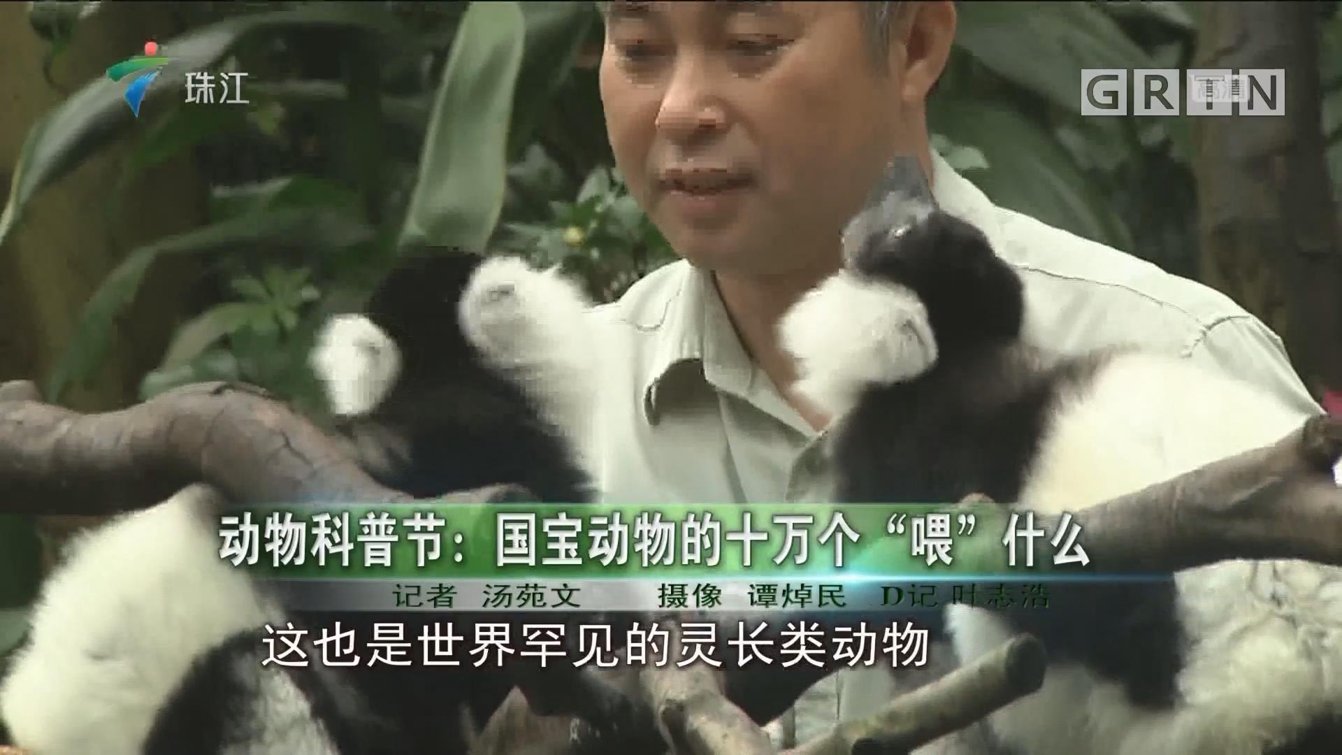"""动物科普节:国宝动物的十万个""""喂""""什么"""