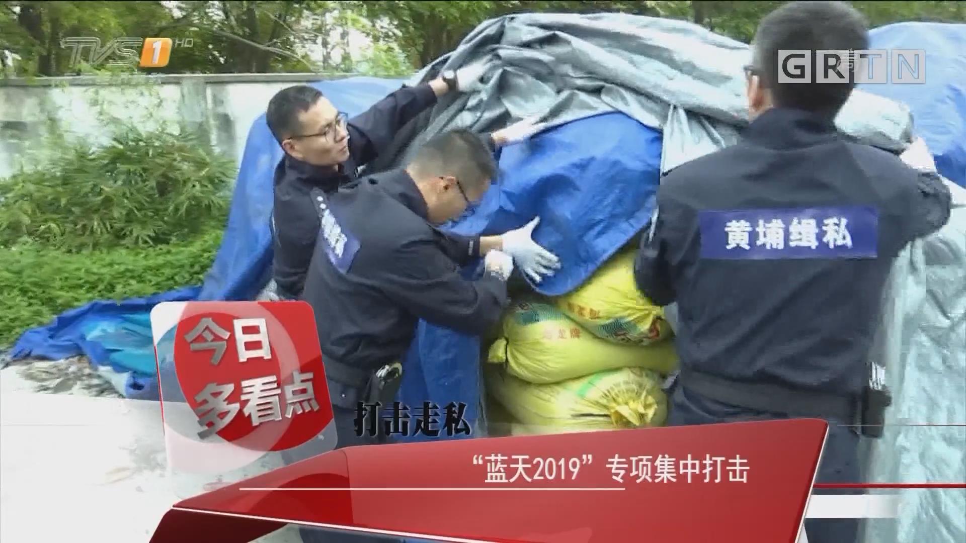 """打击走私 """"蓝天2019""""专项集中打击"""