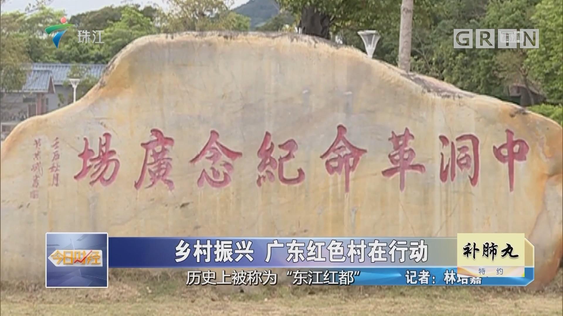 乡村振兴 广东红色村在行动