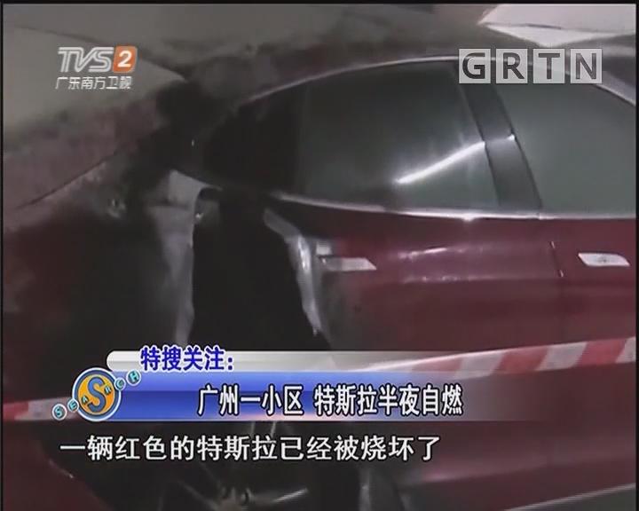广州一小区 特斯拉半夜自燃