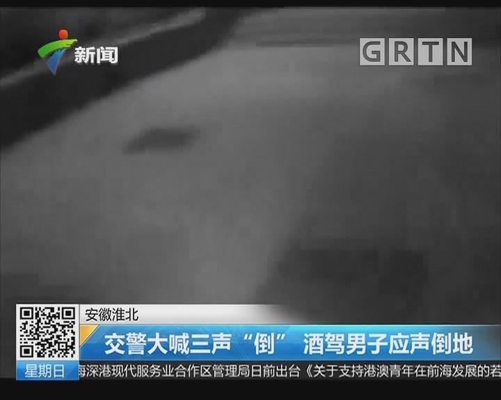 """安徽淮北:交警大喊三声""""倒"""" 酒驾男子应声倒地"""