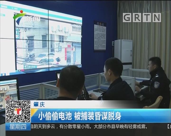 肇庆:小偷偷电池 被捕装昏谋脱身