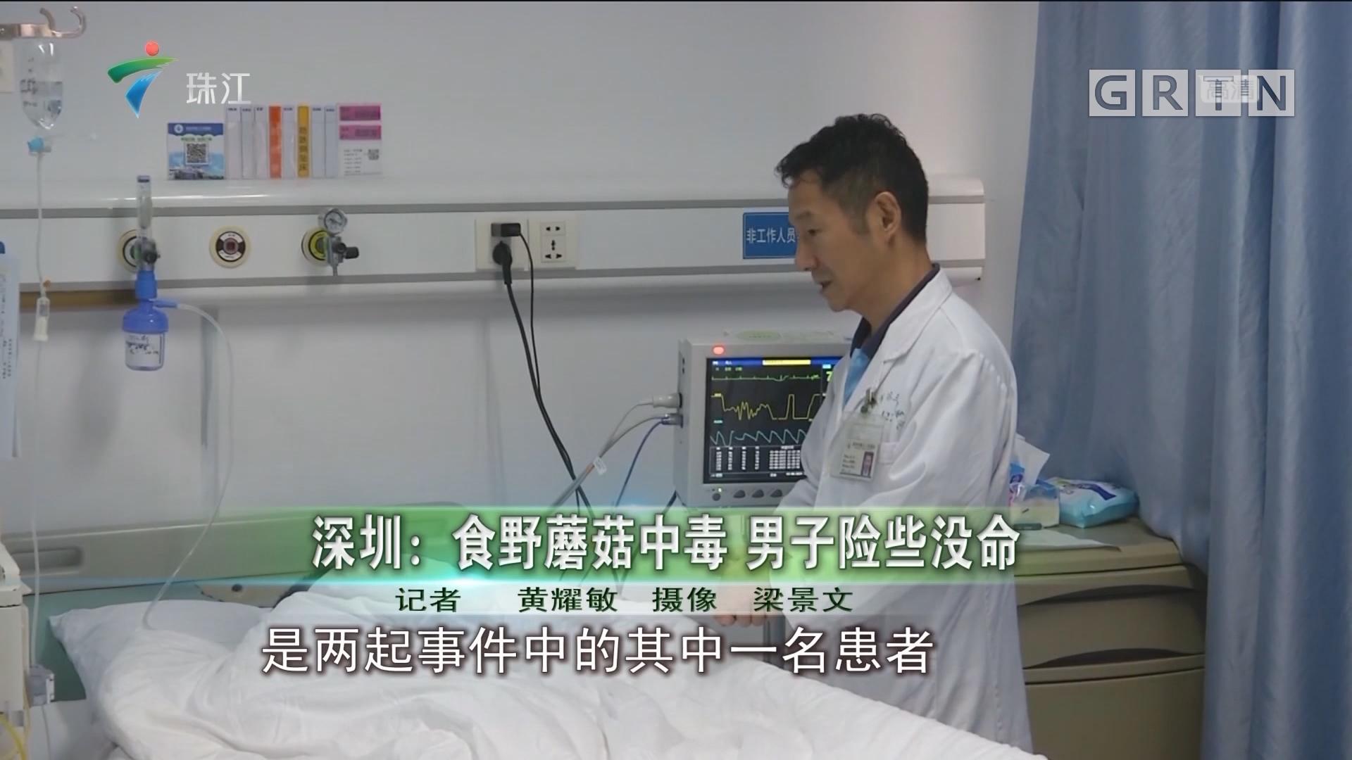深圳:食野蘑菇中毒 男子险些没命