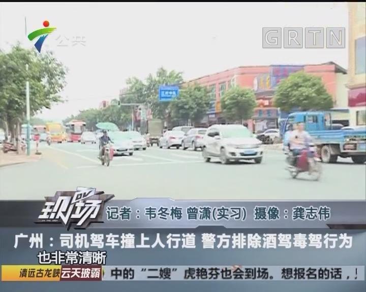 广州:司机驾车撞上人行道 警方排除酒驾毒驾行为