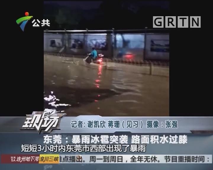 东莞:暴雨冰雹突袭 路面积水过膝