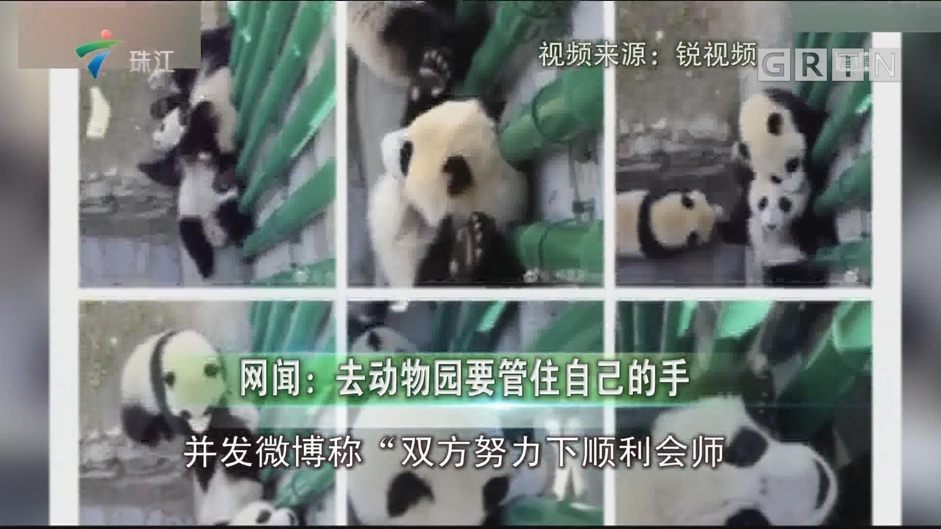 网闻:去动物园要管住自己的手
