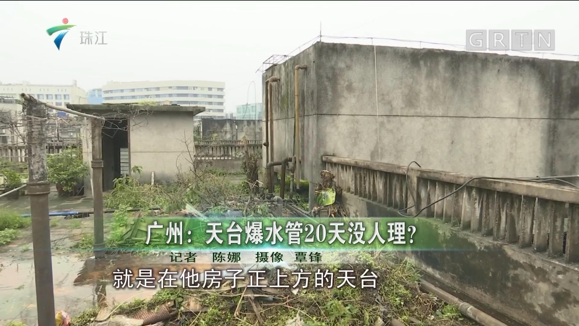 广州:天台爆水管20天没人理?