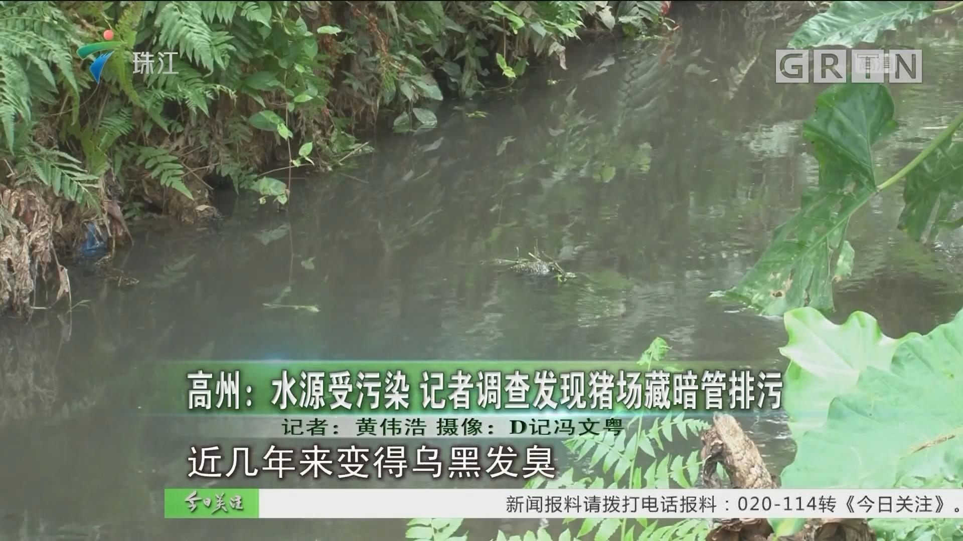 高州:水源受污染 记者调查发现猪场藏暗管排污