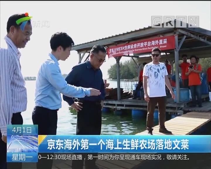 京东海外第一个海上生鲜农场落地文莱