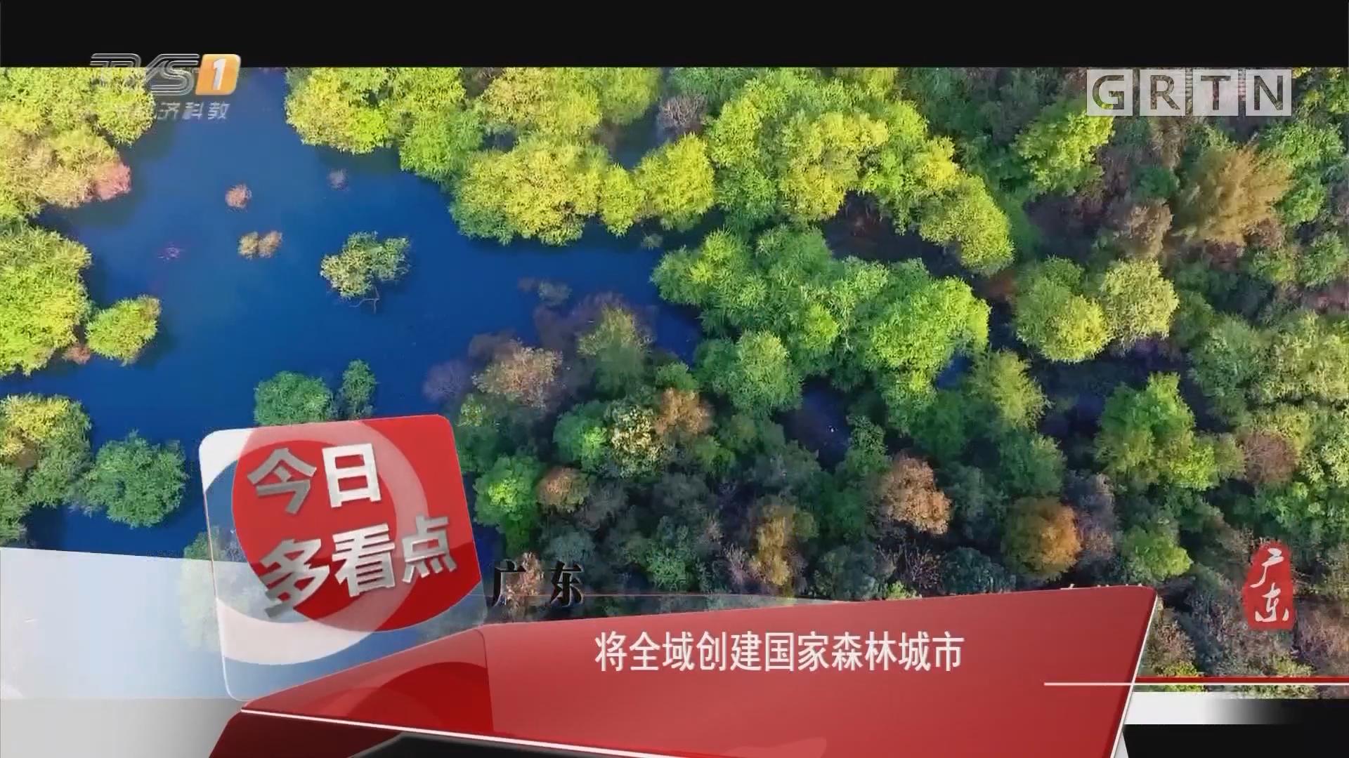 广东:将全域创建国家森林城市