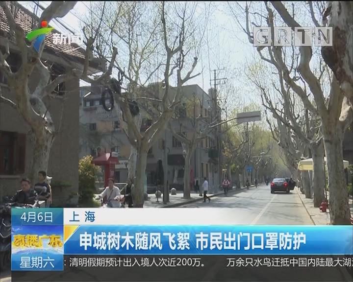 上海:申城树木随风飞絮 市民出门口罩防护