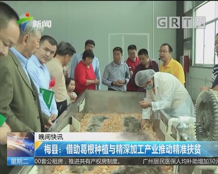 梅县:借助葛根种植与精深加工产业推动精准扶贫