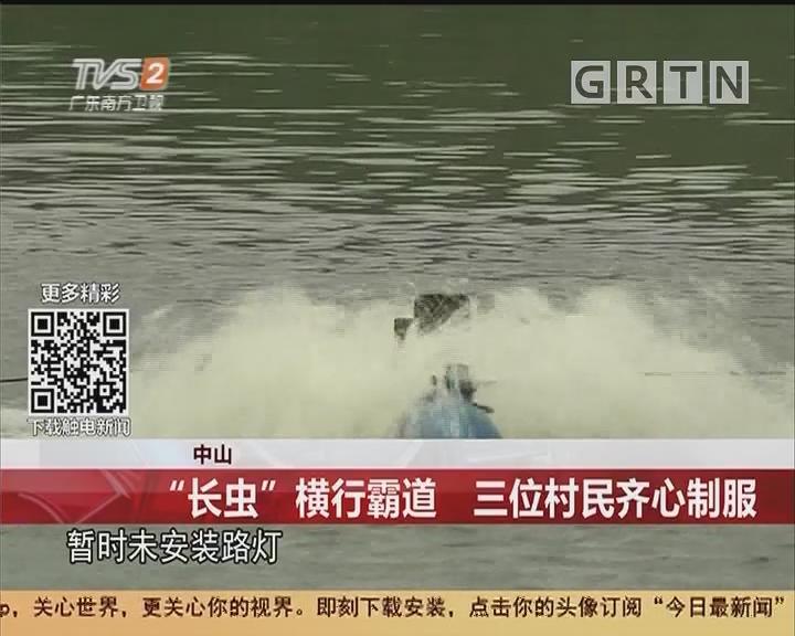 """中山:""""长虫""""横行霸道 三位村民齐心制服"""