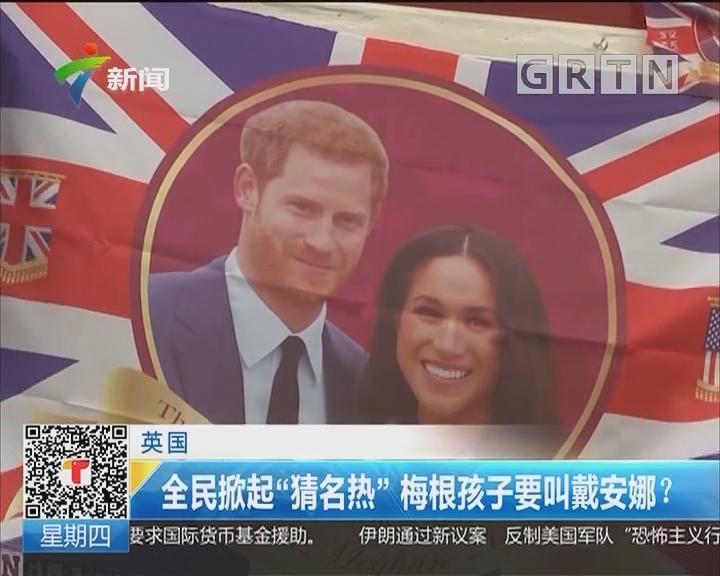 """英国:全民掀起""""猜名热""""梅根孩子要叫戴安娜?"""