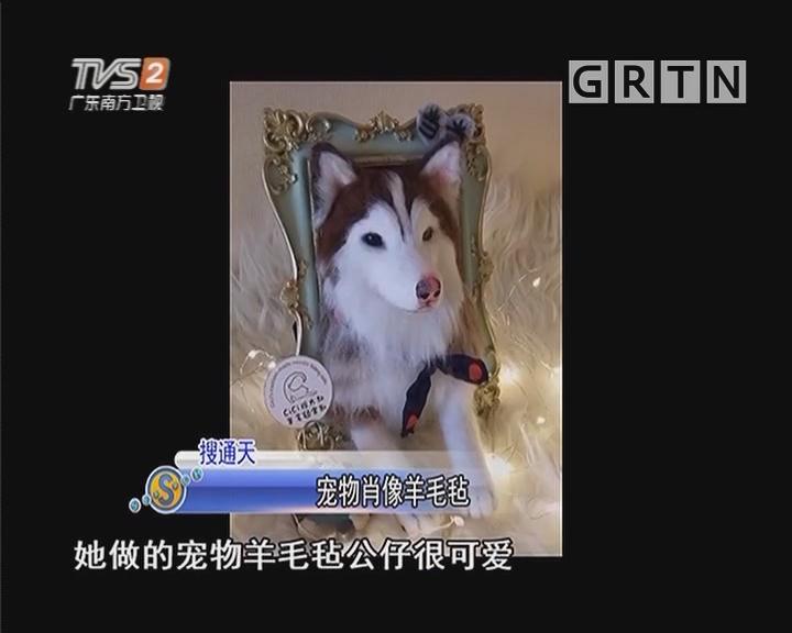 宠物肖像羊毛毡