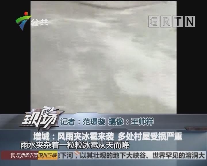 增城:风雨夹冰雹来袭 多处村屋受损严重