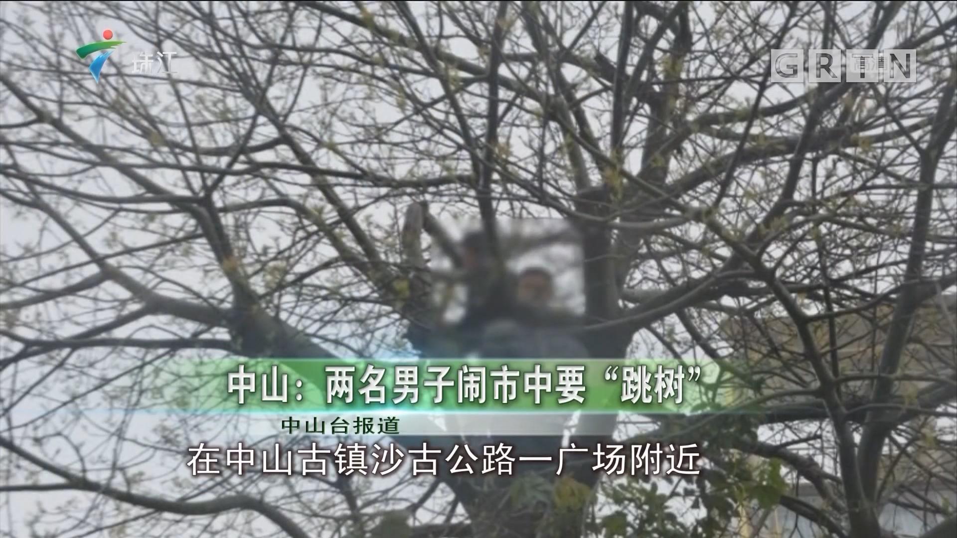 """中山:两名男子闹市中要""""跳树"""""""