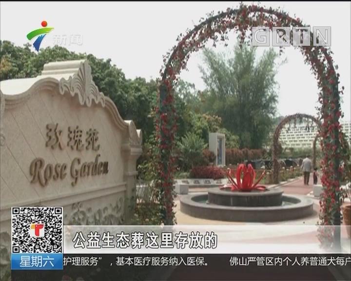 清明节假期第二天:公益生态葬兴起