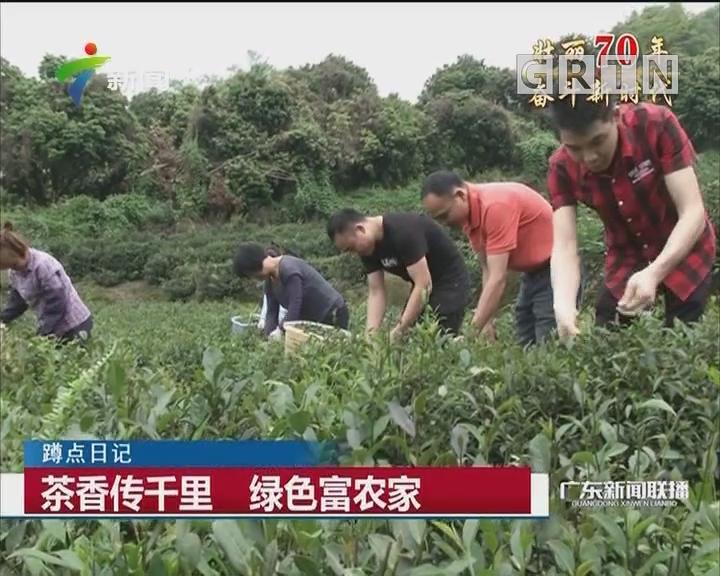 茶香传千里 绿色富农家