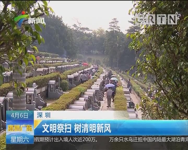深圳:文明祭扫 树清明新风