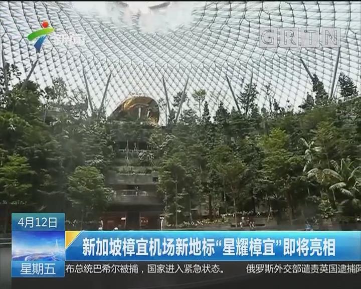 """新加坡樟宜机场新地标""""星耀樟宜""""即将亮相"""